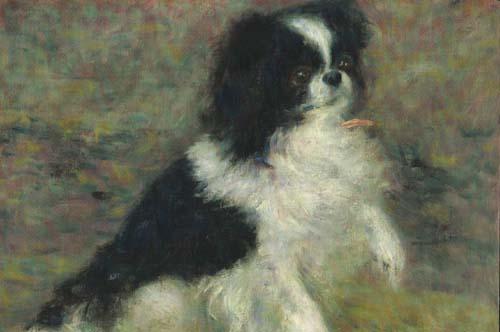 japanesedog